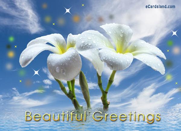 Beautiful Greetings