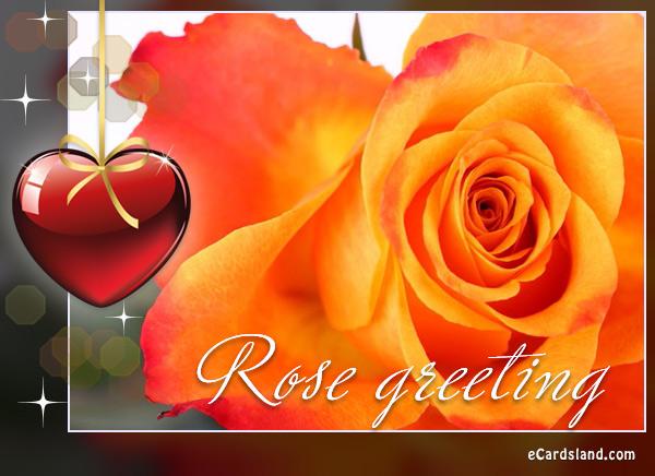 Rose Greeting