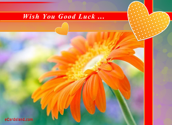 Wish You Good Luck