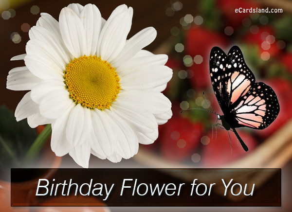 Birthday Flower for You