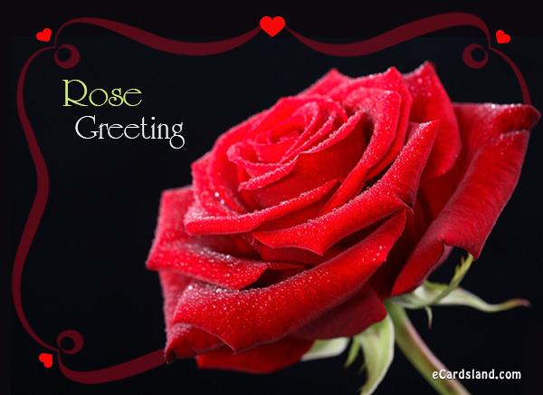 Rose Greeting eCard