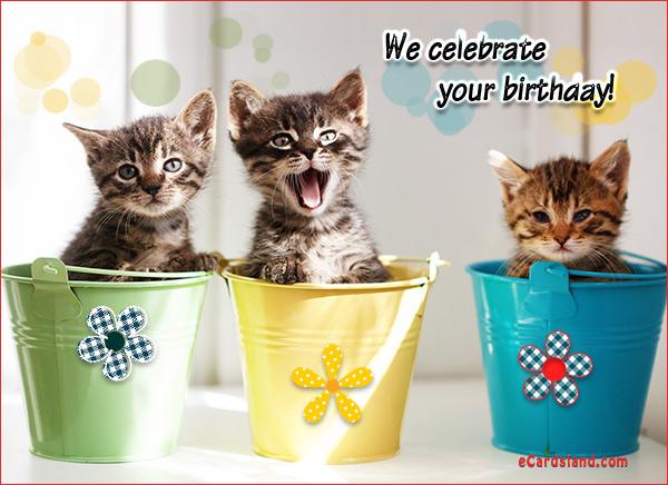 We Celebrate Your Birthday