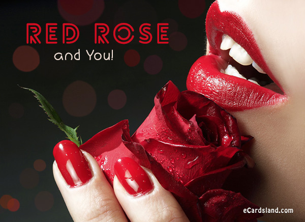 Red Rose and You