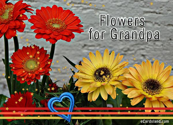 Flowers for Grandpa