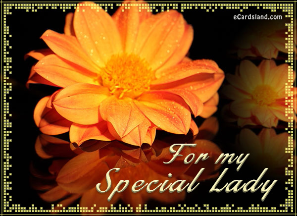 For My Special Lady