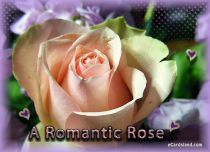 Free eCards, Flowers ecards free - A Romantic Rose,