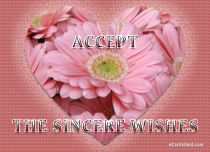eCards Flowers Accept the Sincere Wishes, Accept the Sincere Wishes