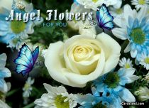 eCards Flowers Angel Flowers, Angel Flowers