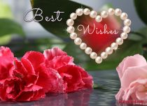 Free eCards - Card with Best Wishes,