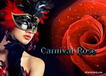 eCards Flowers Carnival Rose, Carnival Rose