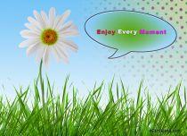 eCards Flowers Enjoy Every Moment, Enjoy Every Moment