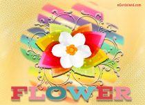 eCards  Flower,