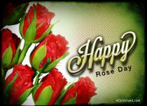 Free eCards, Flowers ecards free - Happy Rose Day,