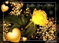 eCards Flowers I offer You a Rose, I offer You a Rose