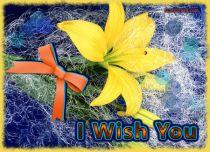 eCards Flowers I Wish You, I Wish You