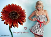 Free eCards - Magic Flower,
