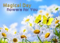 eCards Flowers Magical Day, Magical Day