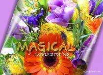 eCards Flowers Magical Flowers, Magical Flowers