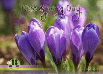 eCards Flowers Nice Spring Day, Nice Spring Day