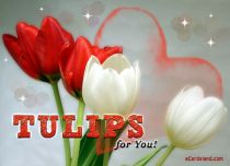 Free eCards, Flowers ecards free - Tulips for You,