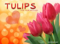 Free eCards, Flowers ecards free - Tulips for Your Beloved,