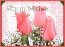 eCards Flowers Warm Wishes, Warm Wishes