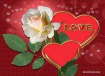 eCards  Rose of Love,