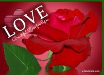 eCards Valentine's Day  Beautiful Rose for You, Beautiful Rose for You