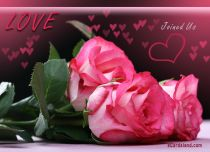 Free eCards, Valentine's Day ecards with music - Love Joined Us,