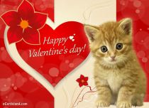 Free eCards, Valentine's Day ecards with music - My Love You Are Special To Me,