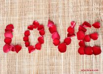 eCards  Rose Petals for Valentine's Day,