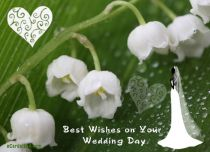 eCards Wedding Best Wishes on Your Wedding Day, Best Wishes on Your Wedding Day