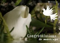 eCards  Congratulations to Marriage,