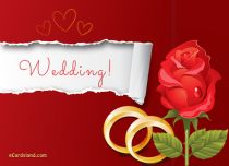 Free eCards Wedding - Wedding,