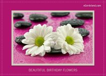 eCards Birthday Beautiful Birthday Flowers, Beautiful Birthday Flowers