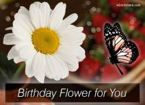 eCards  Birthday Flower for You,