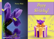 Free eCards - Birthday Greetings,