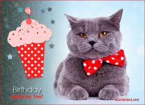 Free eCards - Birthday Muffin for You,