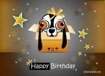 Free eCards - Birthday Surprise eCard,
