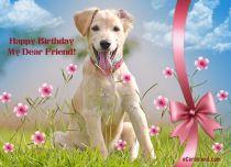 eCards Birthday Happy Birthday My Dear Friend, Happy Birthday My Dear Friend