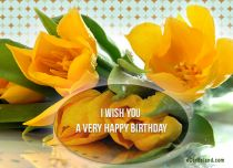 Free eCards - I Wish You a Very Happy Birthday,