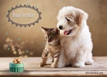 Free eCards, Birthday cards free - I Wish You a Very Happy Birthday,