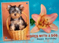 Free eCards, Birthday e card - Wishes with a Dog,
