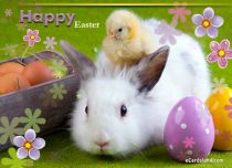 Free eCards, Free Easter cards - Easter Animals,