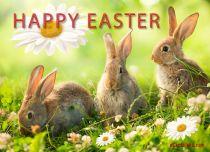 eCards Easter Easter Bunnies, Easter Bunnies
