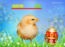 eCards Easter Easter Chick eCard, Easter Chick eCard