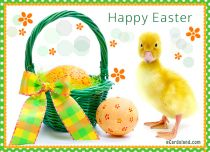 eCards  Easter Duck eCard,