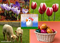 Free eCards, Easter cards messages - Easter eCard,