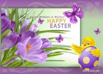 Free eCards - Easter Flowers and Wishes,