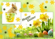 eCards  Easter Greetings eCard,